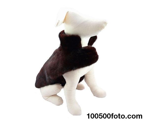 Норковая шуба для собаки