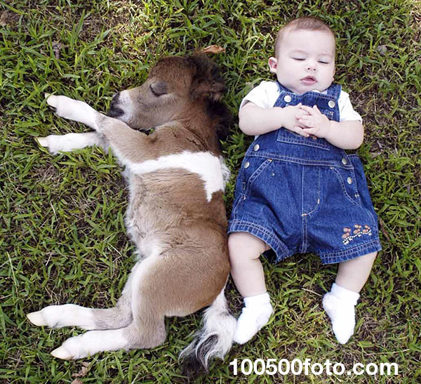 Мини-лошадка с ребенком