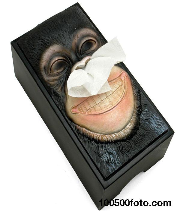 Креативная смешная коробка с салфетками