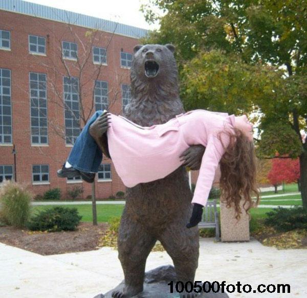 Медведь, потерявший возлюбленную