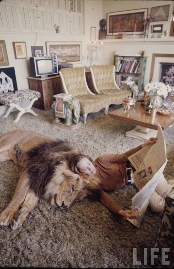 Актриса Типпи Хедрен со своим лохматым любимцем