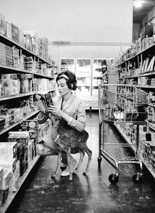 Одри Хепберн и ее олененок Пиппин