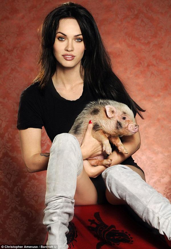 Меган Фокс с вьетнамской вислобрюхой свинкой