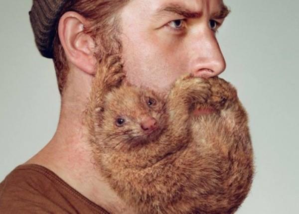 Борода-зверушка