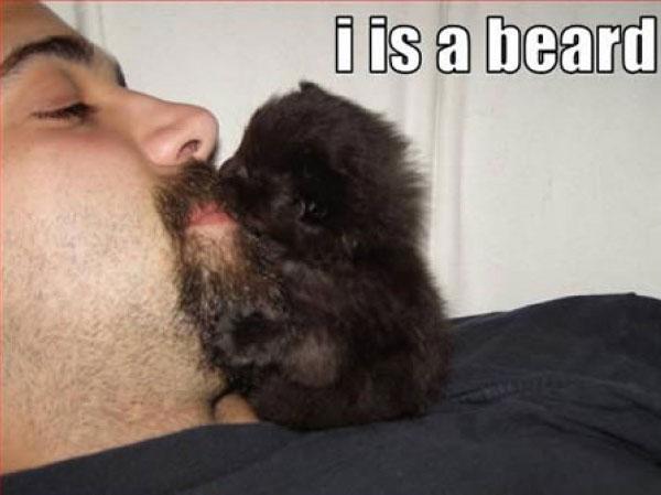 Живая борода
