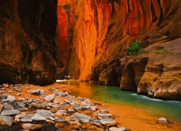 Национальный парк Зайон (США) Знаменитые каньоны парка были образованы давними реками, которые пробивали себе путь в скалах. Когда реки высохли, ветра обточили удивительные выступы камня, а оксиды железа «разрисовали» стены скал удивительными красными узорами всех оттенков.