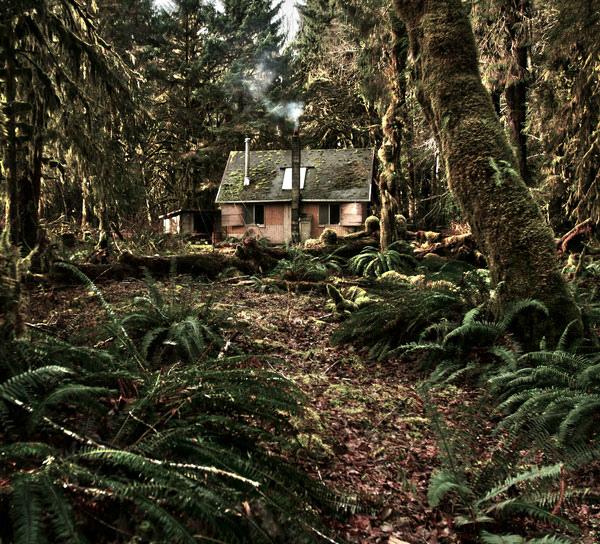 Фото хижина в лесу