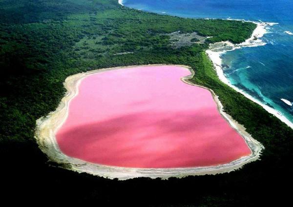 Озеро Хиллер (Австралия) В отличие от других розовых озер мира, где характерный цвет обеспечивают специфические водоросли или микроорганизмы, в озере Хиллер ученым до сих пор не удалось обнаружить причину цвета «в стиле Барби». Причем интенсивность цвета в нем меняется в разные сезоны года.