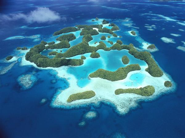 Архипелаг Палау (Каролинские острова) Палау состоит из многочисленных атоллов, которые образовались на верхушках подводных вулканов. Мировое сообщество биологов объявило Палау подводным чудом света. Около их берегов обитает до 1500 видов различных тропических рыб, а также 130 видов акул, некоторые из которых считаются вымирающими. На одном из островов существует озеро Медуз с миллионами созданий, которые не жалятся.