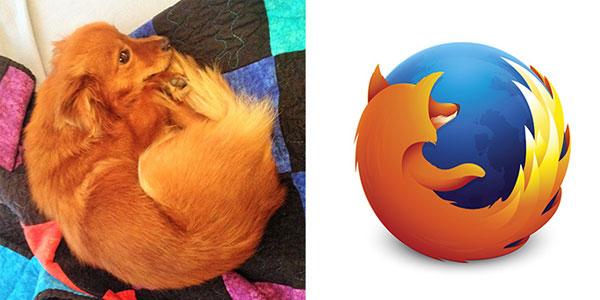 Собака Firefox