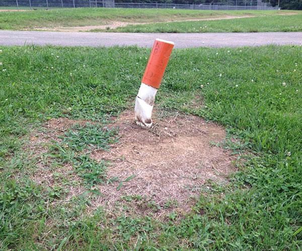 Вы думаете, что это сигарета? На самом деле перед вами на фотографии показан пилон, находящийся в одном из парков.