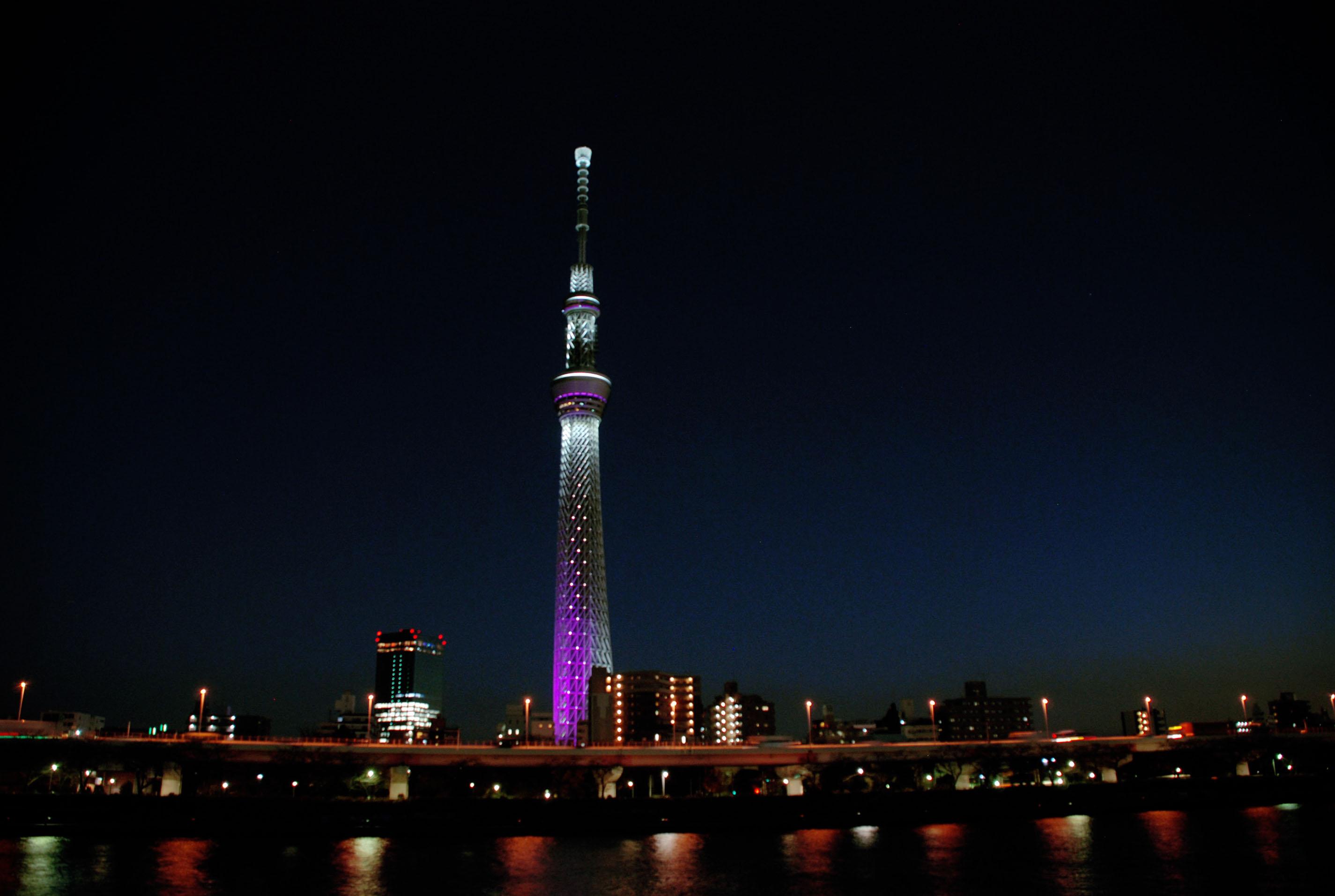 Sumida Tower 3