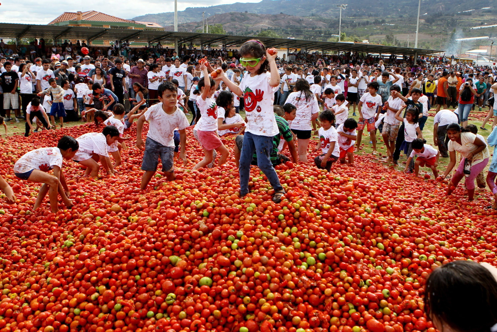 The Tomatina tomato harvest festival in Sutamarchan