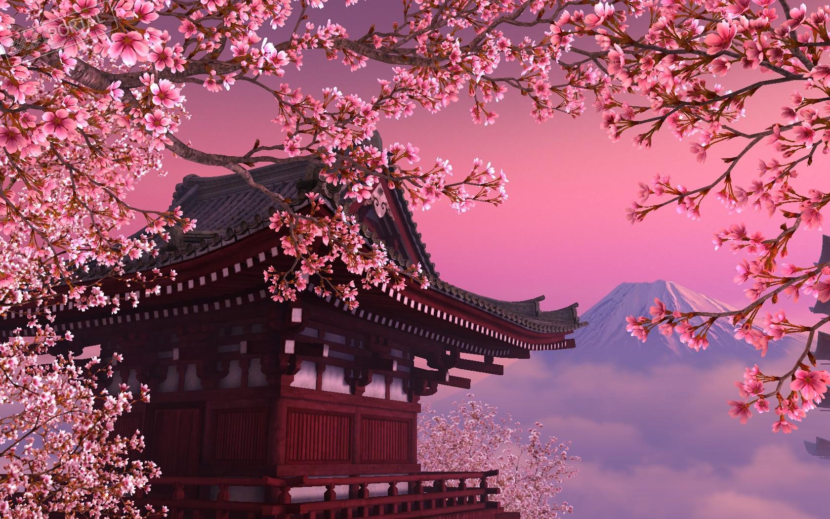 2019 Japan Cherry Blossom Forecast  Japan Rail Pass