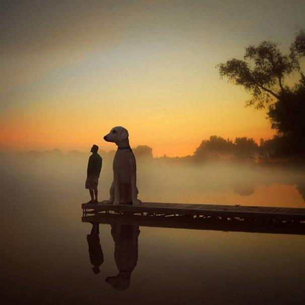 fotograf-Kris-Klayn-sobaka_7