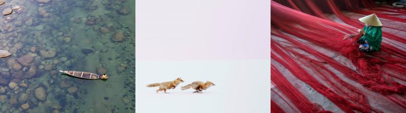 Лучшие фотографии за март по версии National Geographic