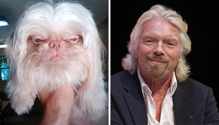 Celebrities and animal foto
