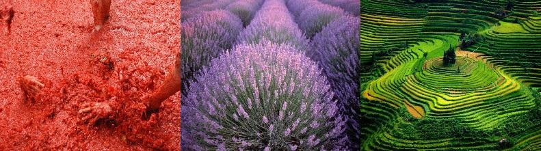 Самые красивые и необычные места в одном цвете