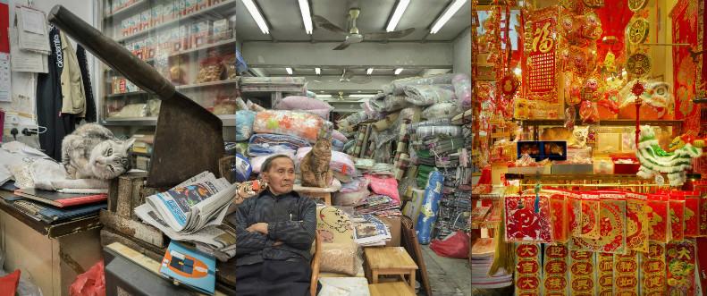 Тайная жизнь магазинных кошек Гонконга в фотографиях