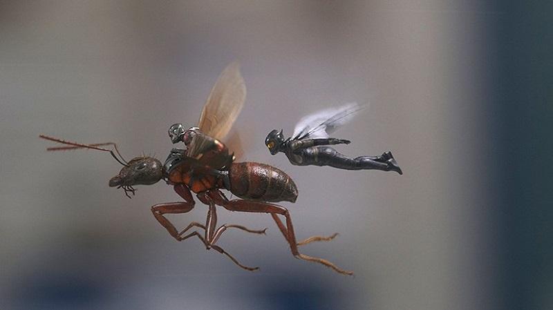 Человек-муравей и Оса-16