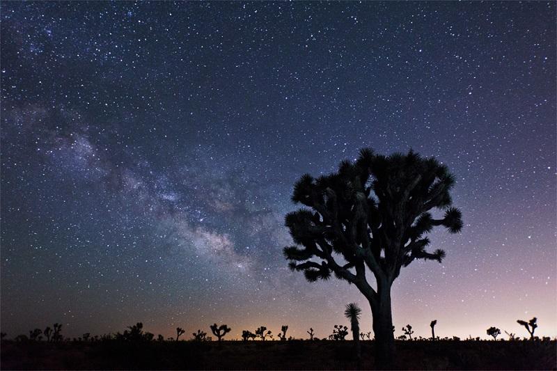 Звездопад Дракониды: самые красивые фото