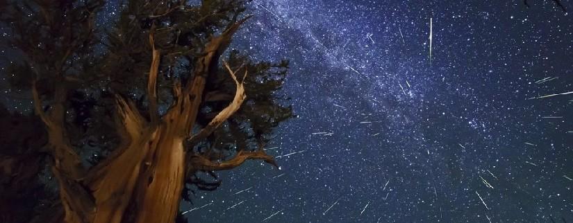 Самые красивые звездопады 2018 года